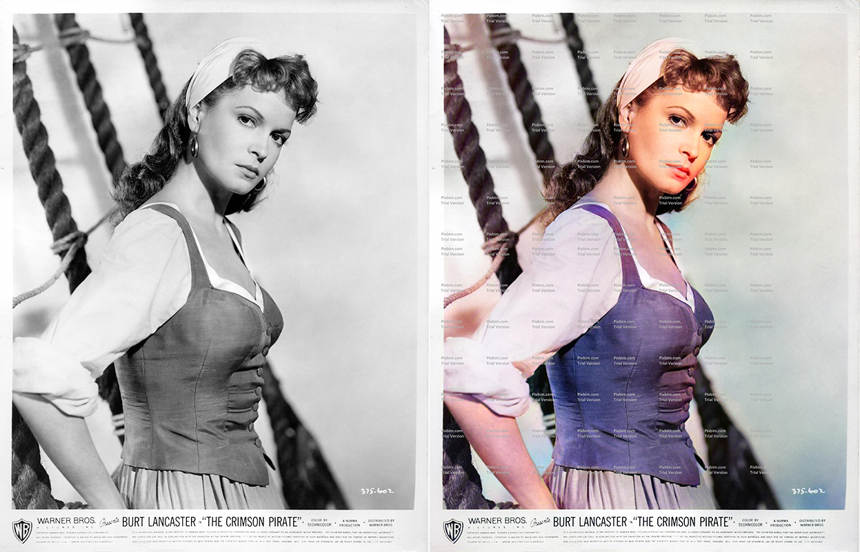 Photo colourised using Pixbim
